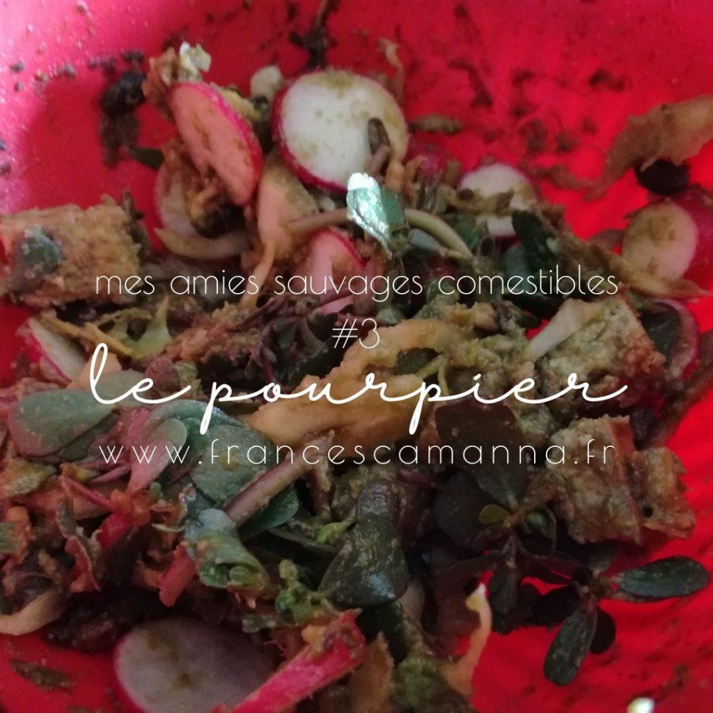 ma salade sauvages à base de pourpier Francesca Manna Naturopathe
