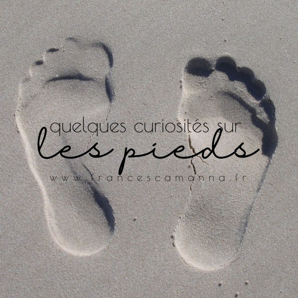 quelques curiosités sur les pieds par Francesca Manna Naturopathe réflexologue